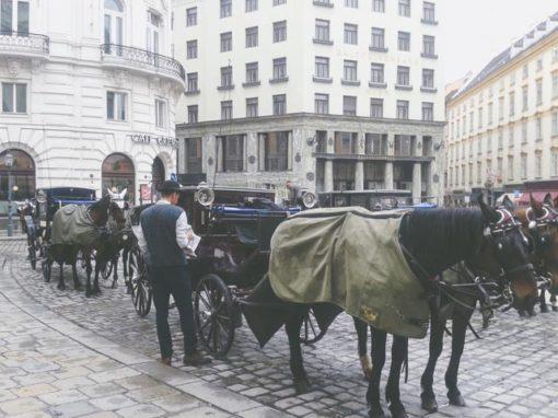 Beč 2014